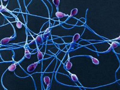 Генетические факторы бесплодия