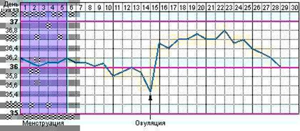 Как фиксировать показатели базальной температуры