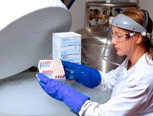 Обследование для донора спермы