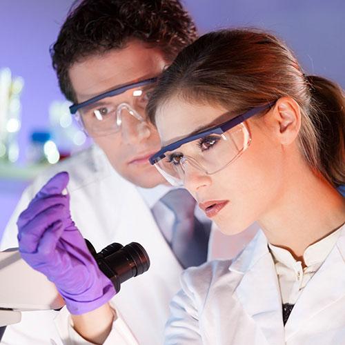 Израильский прорыв: лечение бесплодия с помощью стволовых клеток