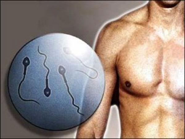 Фертильность мужчины зависит от его матери